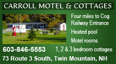 The Carroll Motel and Cottages